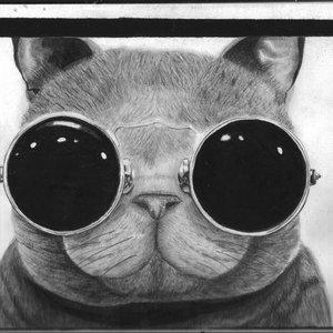 Gatito :3 (terminado)