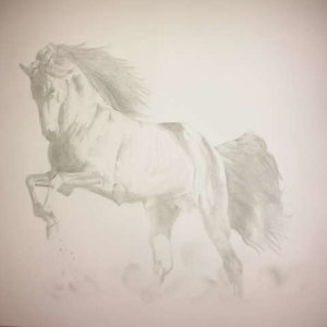 caballo_andaluz_de_mi_tierra_67421.jpg