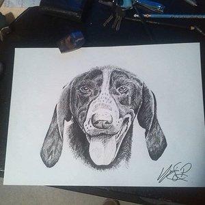 dibujo_de_rapideo_68050.jpg