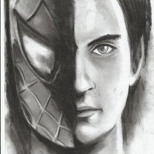 spiderman_49596.jpg