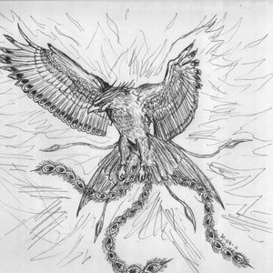 phoenix_68736.jpg