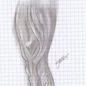 dibujo_pierna_realista_68825.jpg
