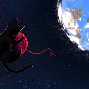 space_cat_71160.jpg