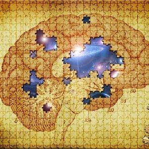 brainpuzzle_71650.jpg