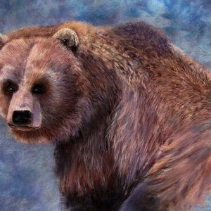 Un oso en la niebla