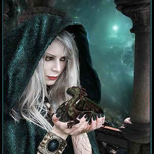 nace_un_dragon_49447.jpg