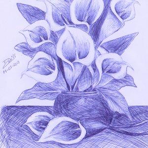 flores_de_alcatraz_52043.jpg