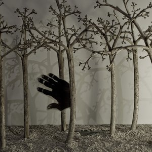 serie_bosques_de_la_noche_52363.JPG