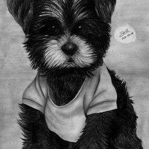 cachorrito_a_lapiz_54195.jpg