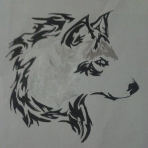 wolf_77280_0.jpg