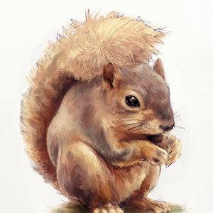squirrrrrrell_77793.jpg