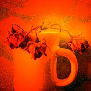 fuego_78136.jpg