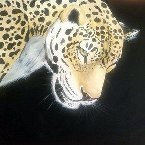leopardo_78605.jpg