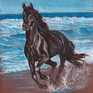 caballo_y_ma_72401.jpg