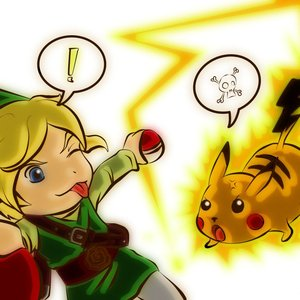Link atrapando pokemones