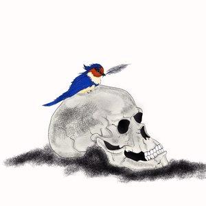 the_bird_78946.jpg