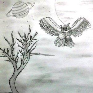 buho_espacial_79583.JPG