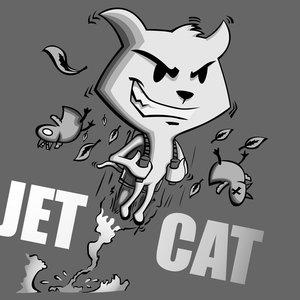jetcat_80072.jpg