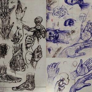 borradores_anatomia_80345.jpg