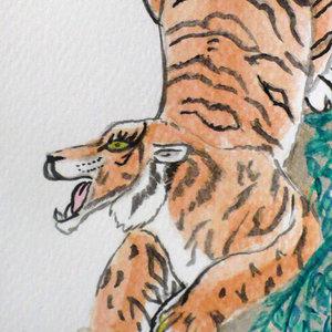 tigre_82015.jpg