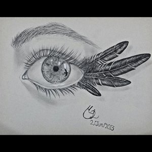 a_traves_de_los_ojos_del_cuervo_82137.jpg