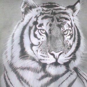 tigre_82527.jpg