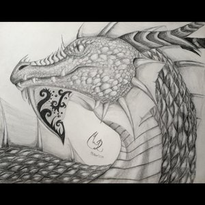 dragon_82737.jpg