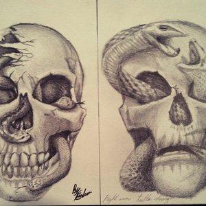 Happy and sad Skullsnake :)
