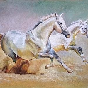 caballos_corriendo_72913.jpg