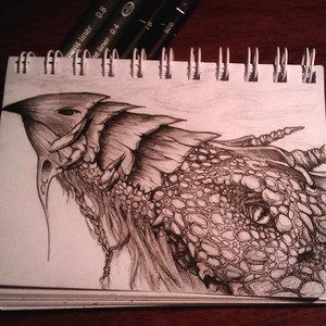 cabeza_de_dragon_72925.jpg