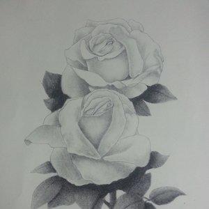 rosas_83754.jpg