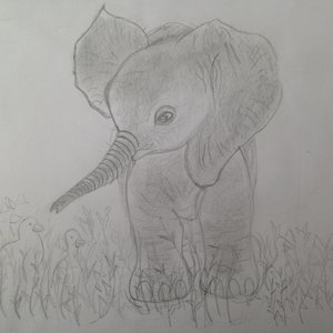 elefante_84055.jpeg