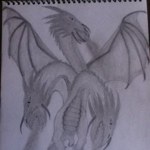 dragon_final_85766.JPG