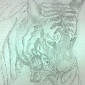 mama_tigre_86222.jpg