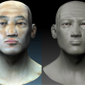 estudio_facial_anatomico_asiatico_86717.jpg