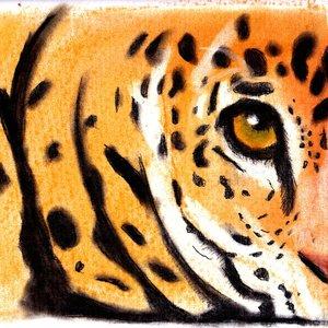 tigre_pastel_89435.jpg