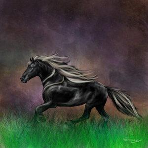 caballo_74103.jpg