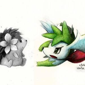 pokemon_shaymin_74665.jpg