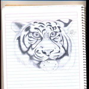 tigre_75174.jpg