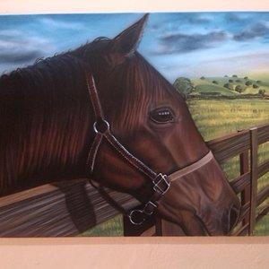 caballo_75991.jpg