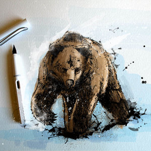 el_oso_bear_solo_tintas_y_color_photoshop_76863.jpg