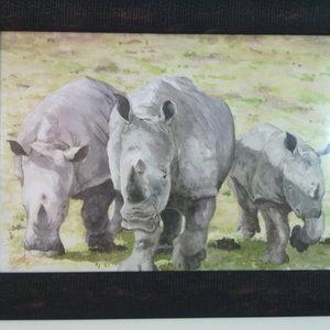 familia_rhino_skin_77271.jpg