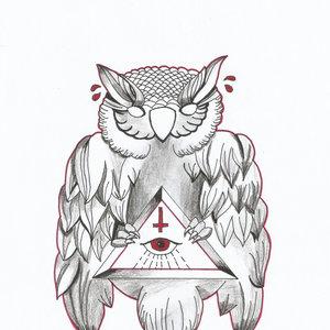 OWL_221711.jpg