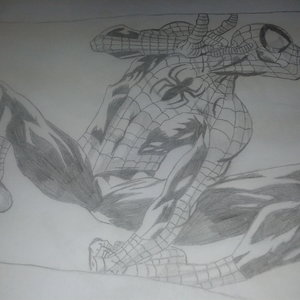 spiderman_224817.jpg