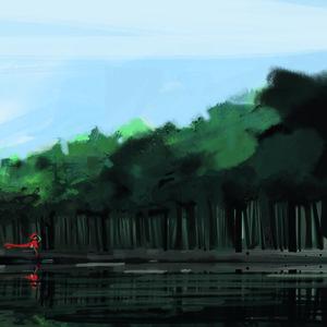 bosque1_225365.jpg