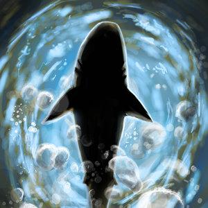 tiburon_211110.jpg