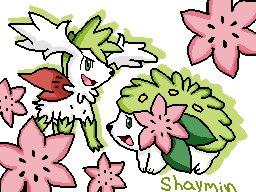 shaymin_226102.png