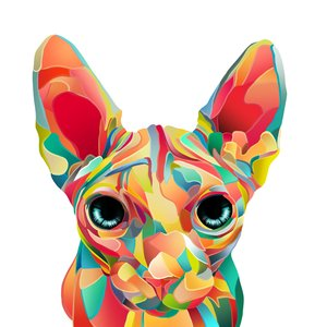 colorful_cat_by_maite15_d8vimki_231547.png