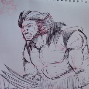 Wolverine__Dibujo_de_Colectivo__231889.JPG