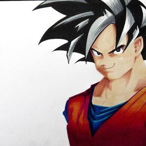 Goku1_234563.jpg